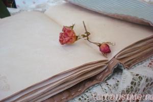 Софтбук Соловей и роза
